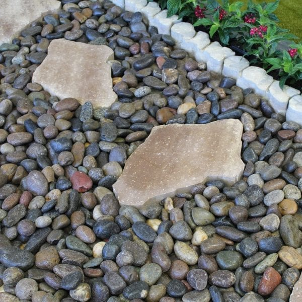 Rain Forest Mixed Polished Pebbles