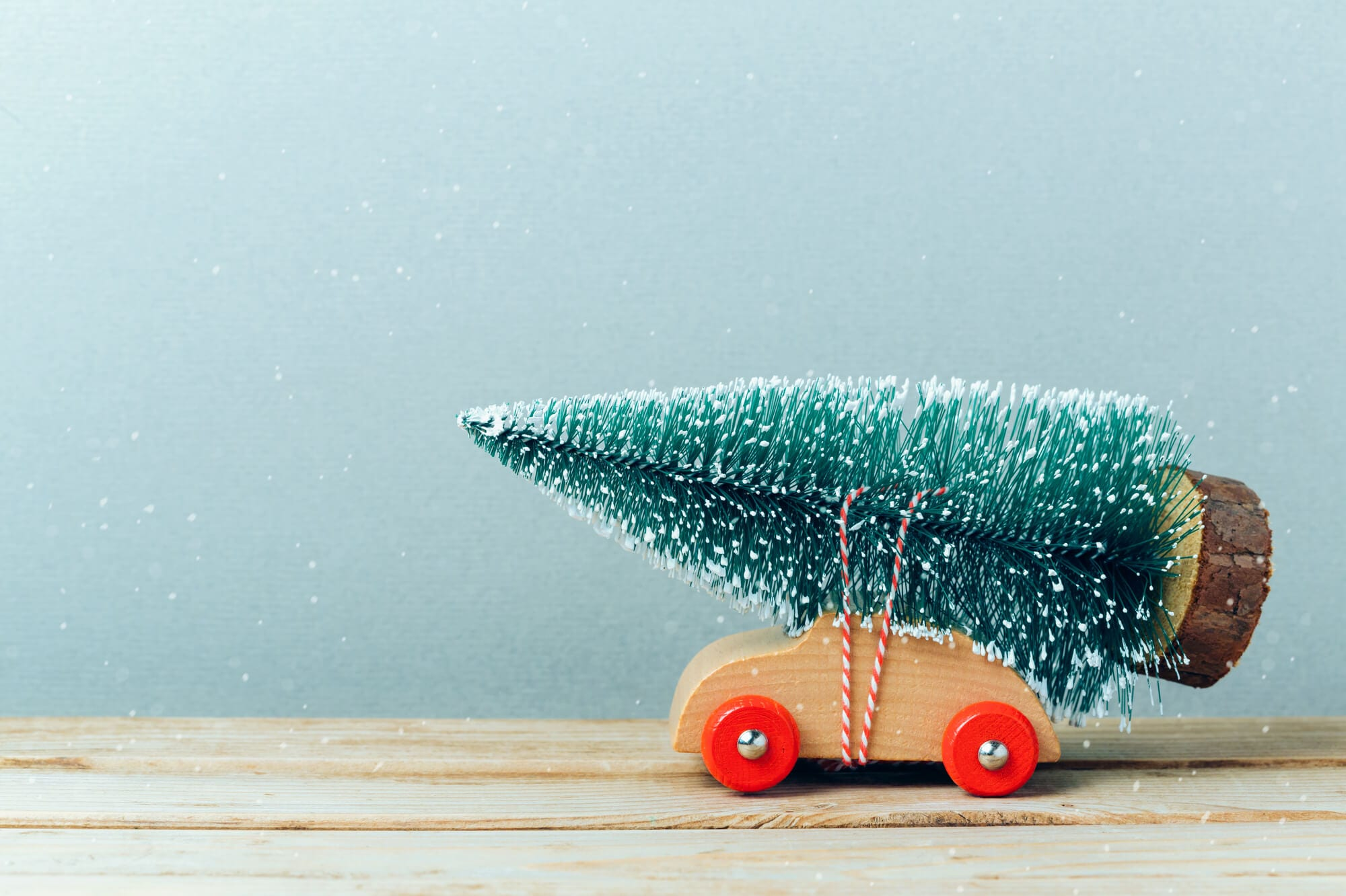5 Ways To Re-Use Your Christmas Tree After The Holidays