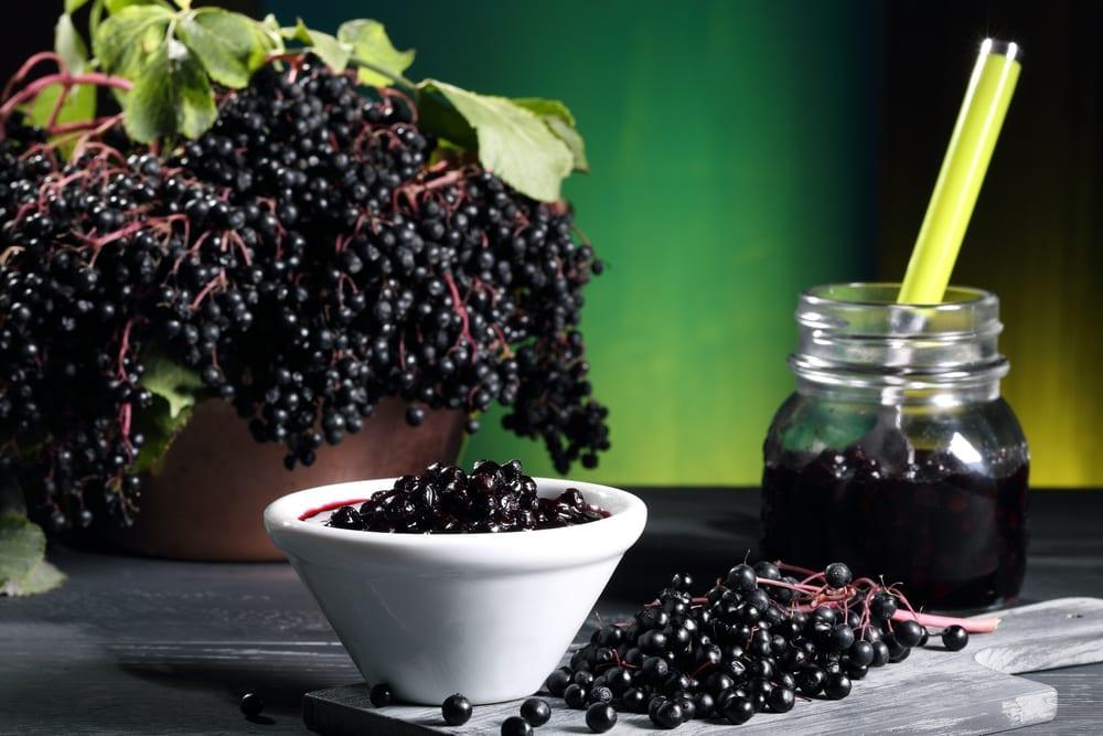 Elderberries displayed in a bowl.
